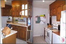Rona Kitchen Cabinets Hanover Rona Building Centre Decor Cabinets Ltd Ikea Kitchen