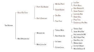 Horse Pedigree Chart In The Blood The Wizster Weg Part 5 Quarter Horse News