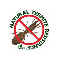 termite resistant mulch. Contemporary Mulch Picture With Termite Resistant Mulch S