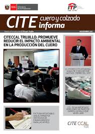 Cite Informa By Citeccal Trujilllo Issuu