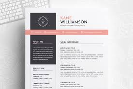 Professional Resume Template Ms Word Cv Design Template