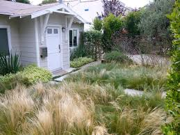 Small Picture 181 best Grasses images on Pinterest Ornamental grasses Garden