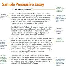 essay about against abortion sweet partner info essay about against abortion a good persuasive essay examples essay example of good argumentative essay best