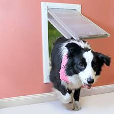 patio pacific flap large wall mount by endura as the second best dog door