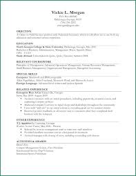 Resume With Internship Experience Mmventures Co