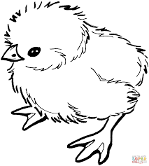 Easter Chicks Coloring Page Hatching Chick
