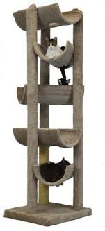 cat gyms for sale. Delighful Sale Alleyway By Molly And Friends With Cat Gyms For Sale E