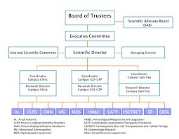 Ub Organizational Chart Organizational Chart Josep Carreras Leukaemia Research