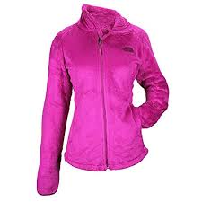 The North Face Womens Tech Osito Jacket