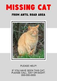 Missing Cat Poster Template Missing Cat Poster Template How To Create A Missing Cat Poster