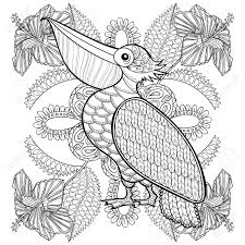 Small Picture Coloring Page With Pelican In Hibiskus Flowers Zentangle