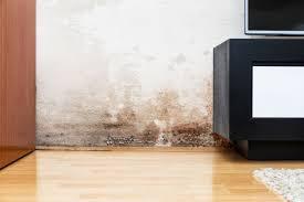 Der schimmel nach wasserschäden ist in manchen fällen schlimmer als die unmittelbaren schäden. Feuchte Wande Ursachen Und Losungen Dafur