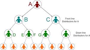 How Does Binary Mlm Work Kiran Chandrashekhar Medium