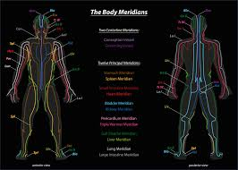 Chinese Meridian Chart Pdf Qigong Students Heres How To Make Sense Of The Meridians