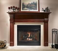Fireplace Insert Glass Doors Glass Fireplace Doors Black Great Black Fireplace Doors