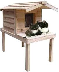 insulated cedar outdoor cat house indoor houses enclosed best