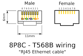 rj45 female connector wiring diagram fitfathers me rj45 connection diagram at Wiring Diagram Rj45 Connector