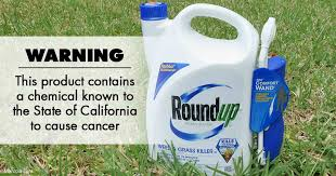 Image result for Roundup and cancer