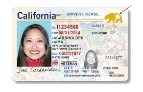 Id Cards California Your Are Holders Laist Fine Down Real Calm