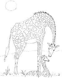 Giraffe Coloring Pages Printable Christmas Worksheet Printables
