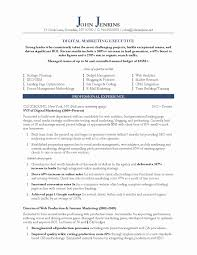 Sample Resume Of Marketing Executive Sample Resume For Sales And Marketing Executive Best Resume Format 2