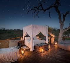 Lion Sands Game Reserve  Luxury Treehouses Night Under The StarsTreehouse Hotel Africa