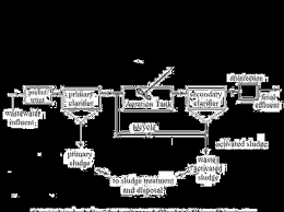Give A Flow Chart Of Sewage Treatment From Biology Microbes