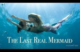 real mermaids found alive discovery channel. Here You Can Find Some New Design About Real Mermaid Found Video Metacafe For Your Current Screen Resolution And Mermaids Alive Discovery Channel