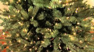 Everlands 7ft Nobilis Fir Artificial Christmas Tree  BlueArtificial Blue Spruce Christmas Tree