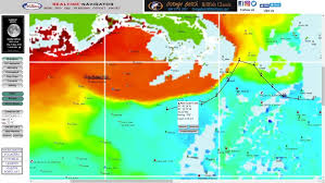 Chlorophyll Fish Forecast Hiltons Offshore In The Spread