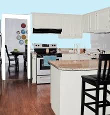 Duck Egg Blue Kitchen Cabinets Pale Blue Kitchen Ideas Quicuacom
