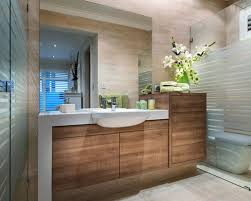 bathroom cabinet design. Shallow Vanity Design Ideas Amusing Designs Of Bathroom Cabinets Cabinet