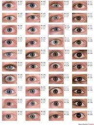 Structural Eye Color Google Search In 2019 Eye Color