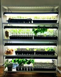 diy cfl grow light plant light plant light stand old chic idea grow shelves remarkable ideas