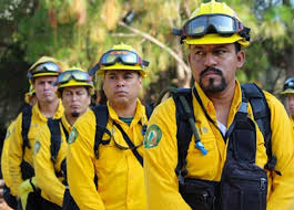 Mexico sends record number of firefighters to battle fires in Canada
