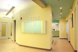 Pediatric Dentist Office Design Unique Decorating Design