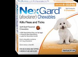Easy To Give Nexgard Beef Flavored Chews