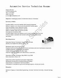 Sample Resume For Entry Level Automotive Technician New Resumes