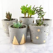 Concrete and Gold DIY Plant Pots (Craft Gawker)