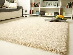 a good vacuum for high pile carpet