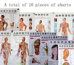 Healthy Human Body Acupuncture Point Chart Tcm Chinese
