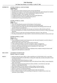Internal Resume Template Internal Resume Template Promotion Download Wholesaler Intern 28