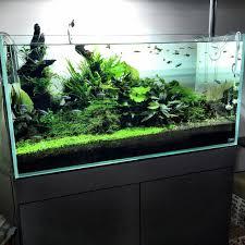 ada cube garden 90 p wood cabinet silver metalic grand solar i super jet es 1200 private apartment national chion of mtb marek majtek konwa poland