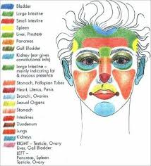 An Interesting Diagram That Shows What Can Cause Acne On