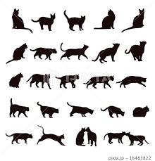 ネコ シルエット セットのイラスト素材 16483822 Pixta