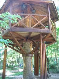 treehouse blueprints pallet tree house plans swiss family robinson treehouse blueprints