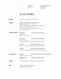Cool Elegant Resume Template Microsoft Word 2007 Ideas Entry Level