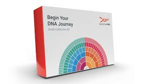 The Best Dna Testing Kits For 2019 Cnet