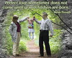 Quotes About Grandchildren Simple Nice Quotes And Sayings About Grandchildren