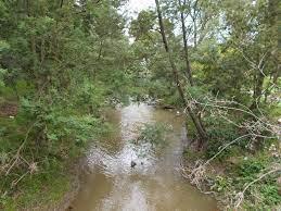 Traralgon Creek